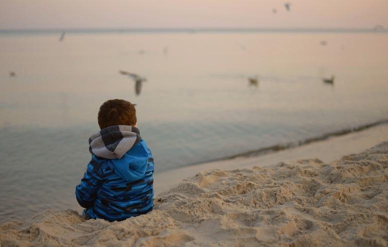 Beach Child Sea Loneliness Birds Reverie Sadness